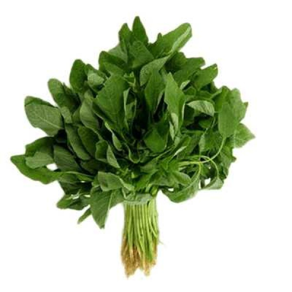 Sunrise Green Amaranthus Hybrid Seeds 6gm
