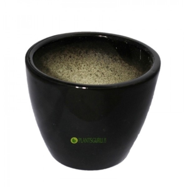 Ceramic Pot Round 3inch Black (Pack of 3)