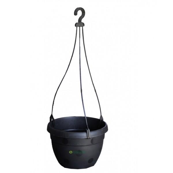 Blossom Hanging Basket Black (Pack of 3)