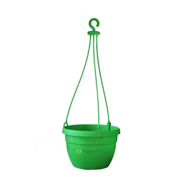 Blossom Hanging Basket Green (Pack of 3)