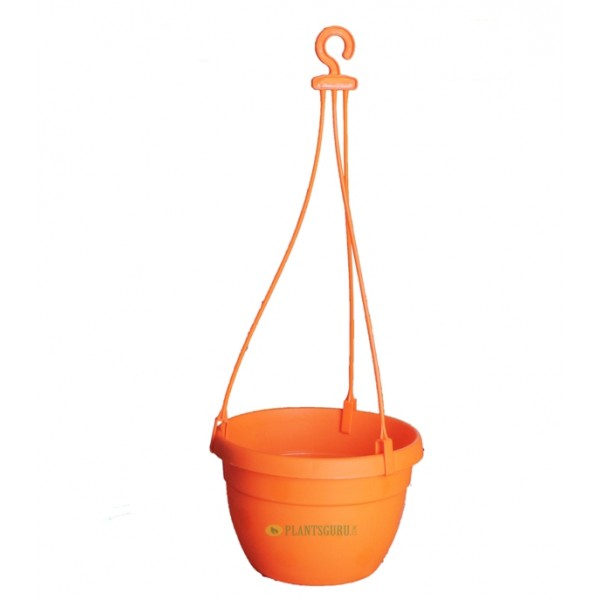 Blossom Hanging Basket Orange (Pack of 3)