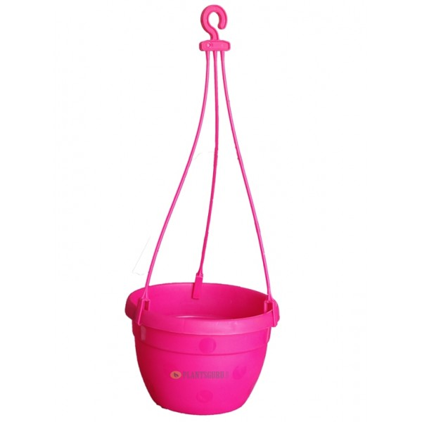 Blossom Hanging Basket Pink (Pack of 3)
