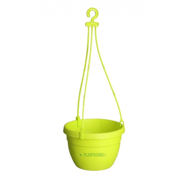 Blossom Hanging Basket Yellow (Pack of 3)