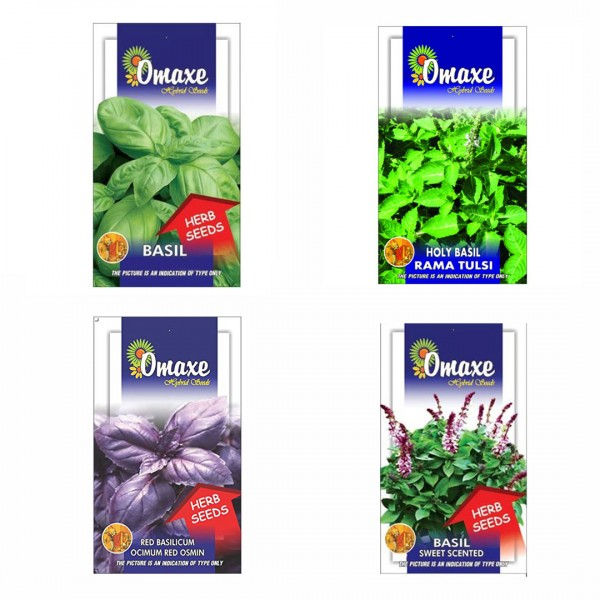 Omaxe Herb Seeds Pack of 4 (Basil Green, Basil Red, Basil Sweet, Holy Basil)