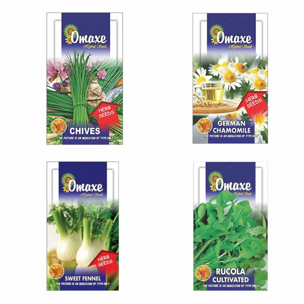 Omaxe Herb Seeds Pack of 4(Chives, Chamomile, Sweet Fennel, Rucola Leaves)