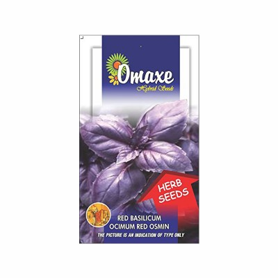 Omaxe Basil Red Osmin Seeds(100 Seeds)