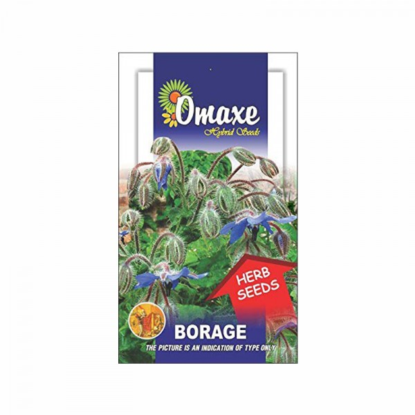 Omaxe Borage Seeds (30-40 seeds)
