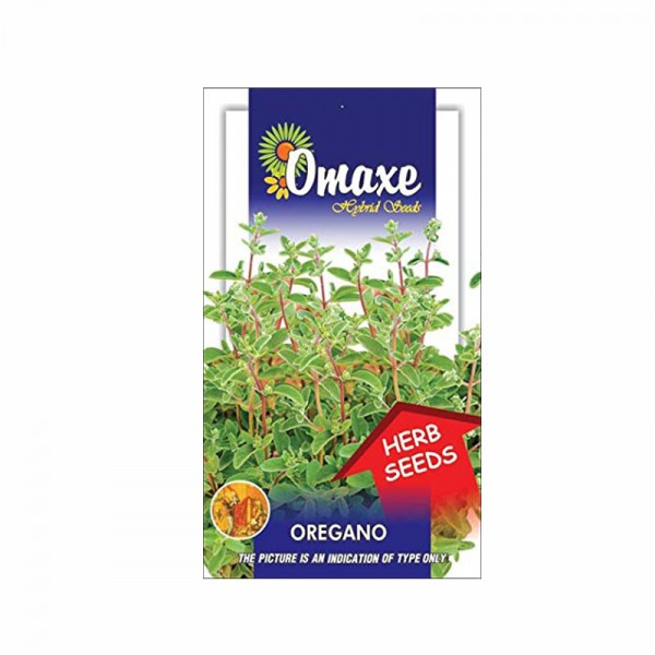 Omaxe Oregano Seeds(30 seeds)