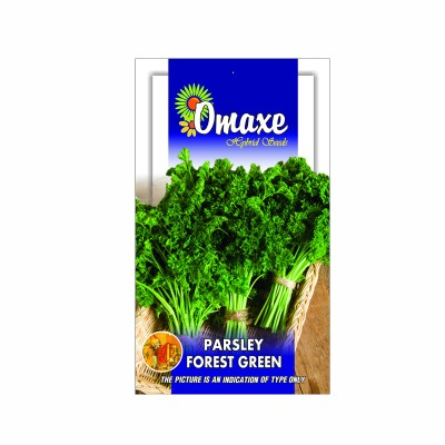 Omaxe Parsley Forest Green (100 seeds)