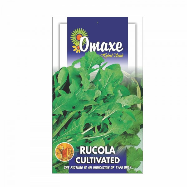 Omaxe Rucola Leaves - Cultivated Seeds (40 Seeds)