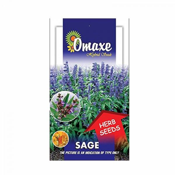 Omaxe Sage Herb Seed (30 seeds)