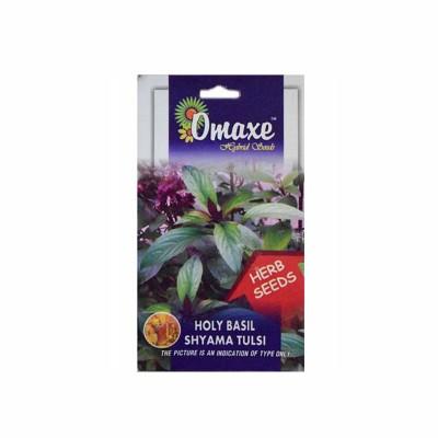Omaxe Shyama Tulsi (Krishna Tulsi) Pack of 100 Seeds