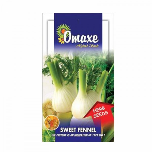 Omaxe Sweet Fennel Florence Seeds (20-30 seeds)