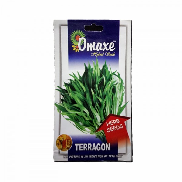 Omaxe Terragon Seeds