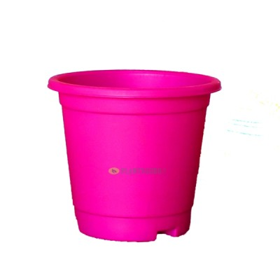 Blossom Pot Pink 6 inch with Plate (Pack of 3)
