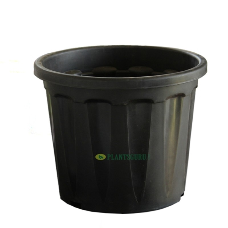 Buy Blossom Planter Black 14 Inch Pack Of 2 Online At