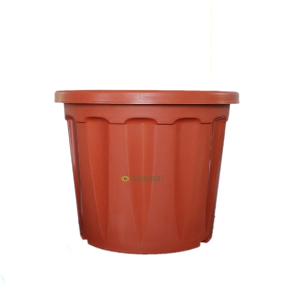 Blossom Pot TC 14 inch (Pack of 2)