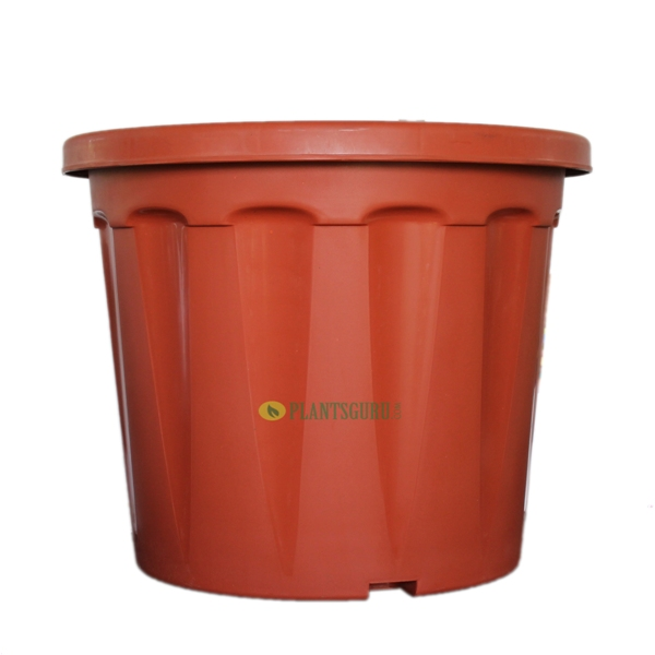 Blossom Pot TC 18 inch (Pack of 2)