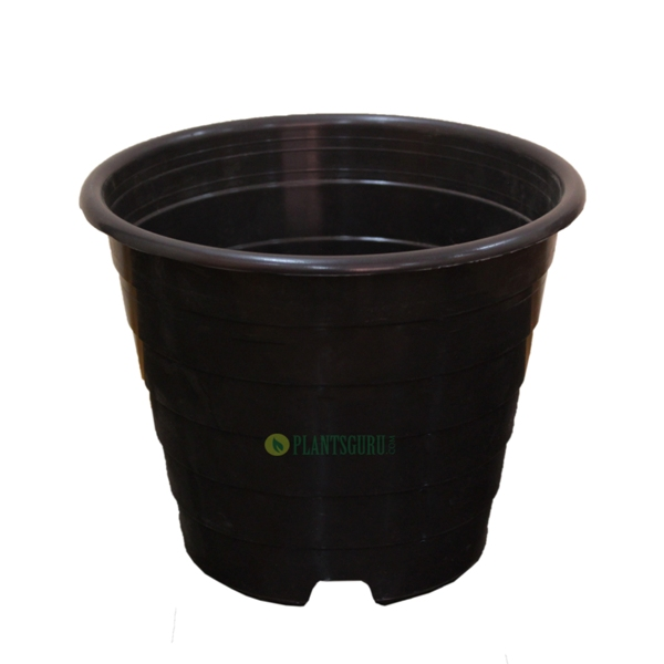 Designer Pot Black 8 inch (Pack of 2)