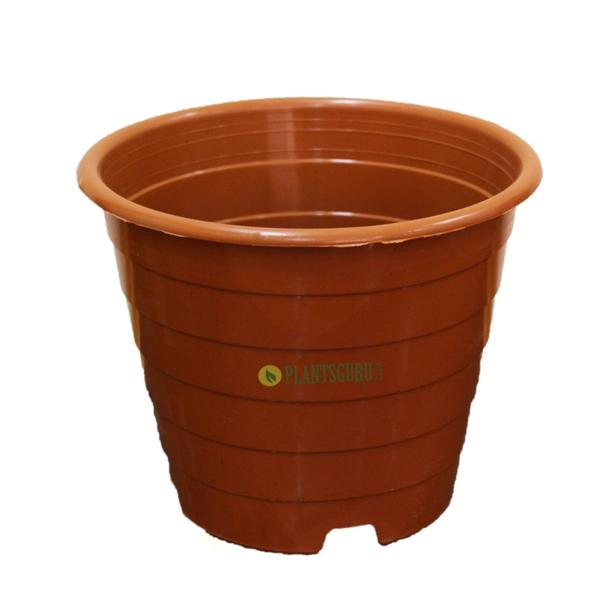 Designer Pot TC 8 inch (Pack of 2)