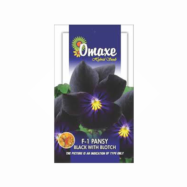 Omaxe Pansy F1 Black with Blotch Seeds