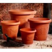 All Plastic Pots