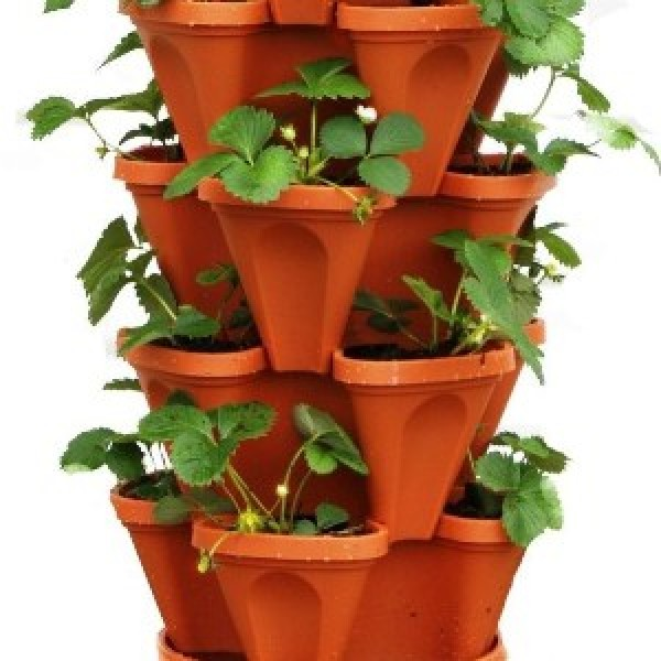 Tower Planter Brown (Pack of 3)