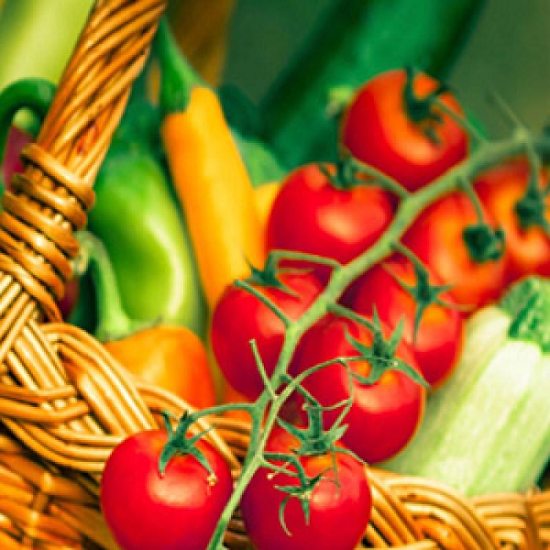 Buy English Vegetable Seeds Pack (set of 12 Packet) online ...