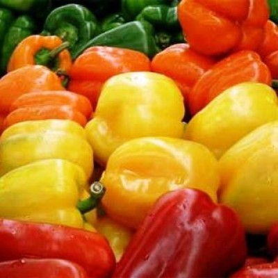 Omaxe Bellpepper Misticanza (30 seeds)