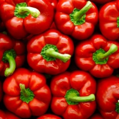 Omaxe Capsicum Red Imported (25 seeds)