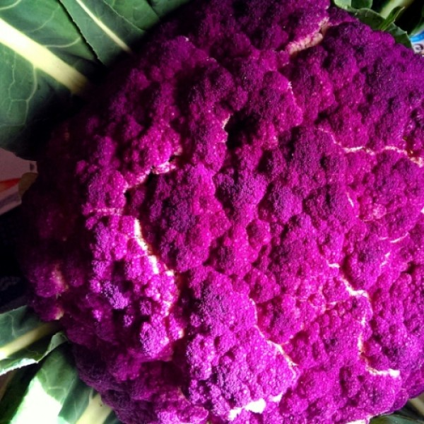 Omaxe Cauliflower Di Sicilia Violetto (30 seeds)
