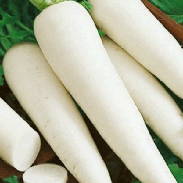 Omaxe Radish F1 Hybrid Great Long White seeds
