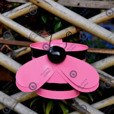 Bee Pink Metal Hook, Railing Planter