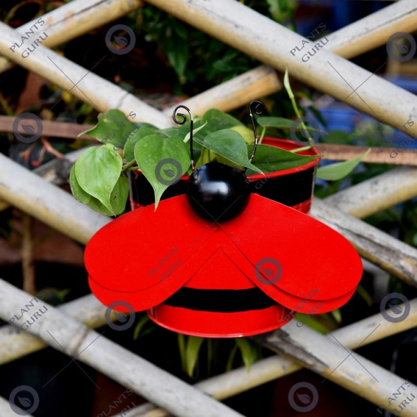 Bee Red Metal Hook, Railing Planter