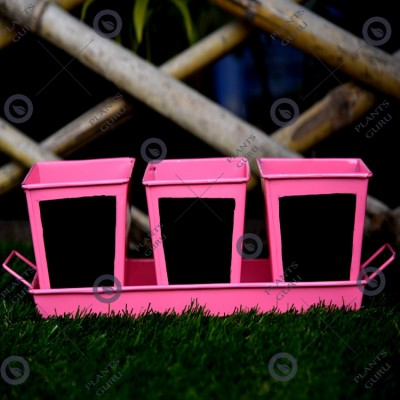 Herb Set Chalk Board Metal Planter Pink