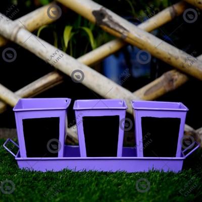 Herb Set Chalk Board Metal Planter Purple