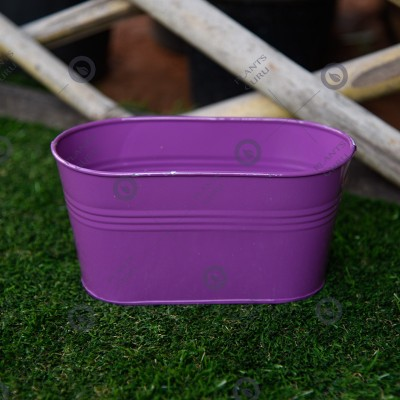 Metal Oval Planter Purple