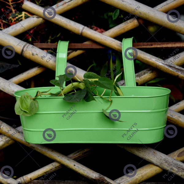 Metal Oval Railing Planter Green