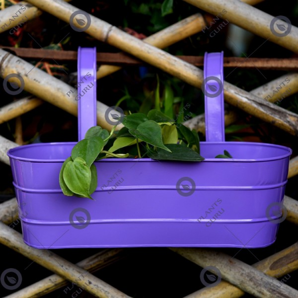 Metal Oval Railing Planter Purple