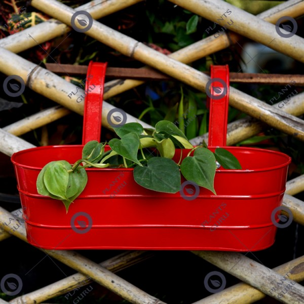 Metal Oval Railing Planter Red