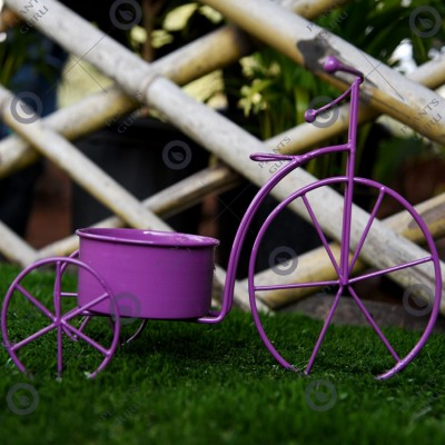 Plant Container Purple Cycle