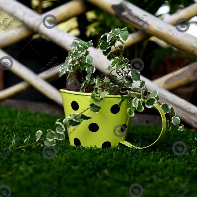 Cup metal planter green small
